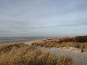 Düne und Meer auf Langeoog