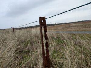 Rostiger Zaunpfahl auf Langeoog