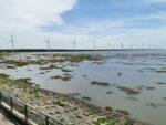 Gaomei Wetlands und Windpark im Hintergrund in Taichung, Taiwan