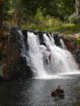 Rochester Wasserfälle