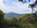 Blick von einem Aussichtpunkt im Blackriver Nationalpark