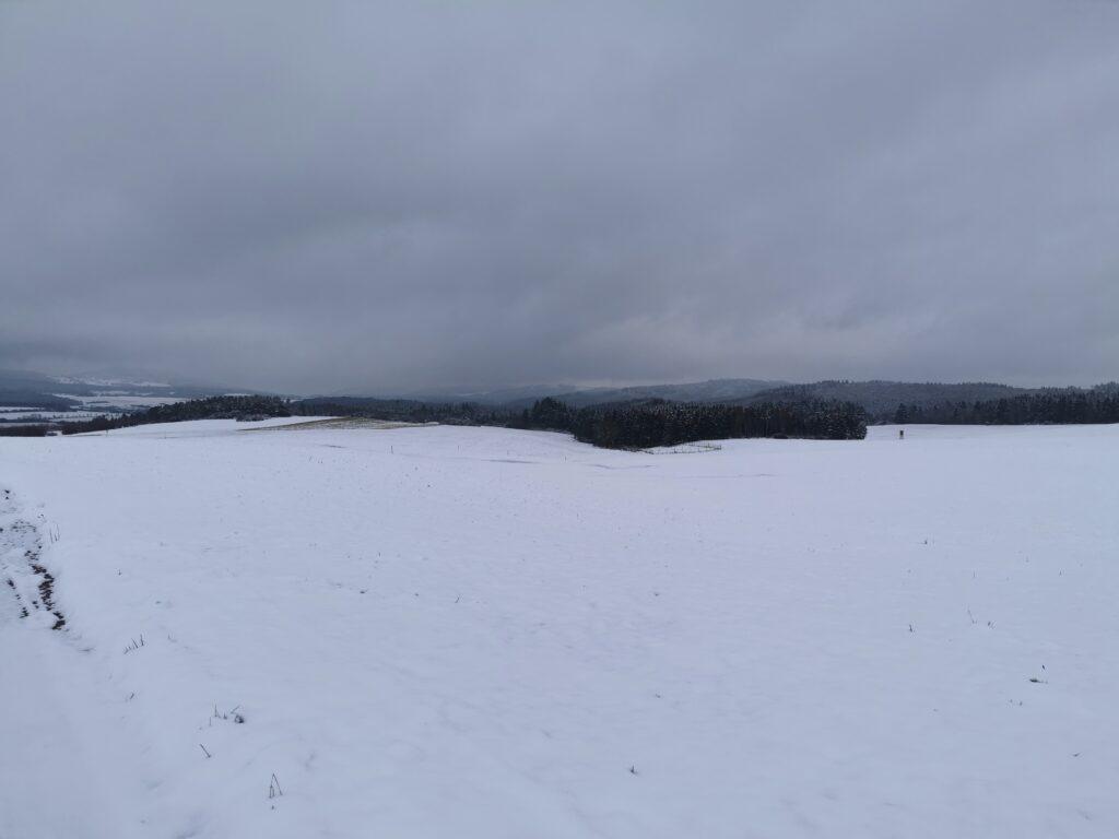 Schnee bedeckte Wiesen