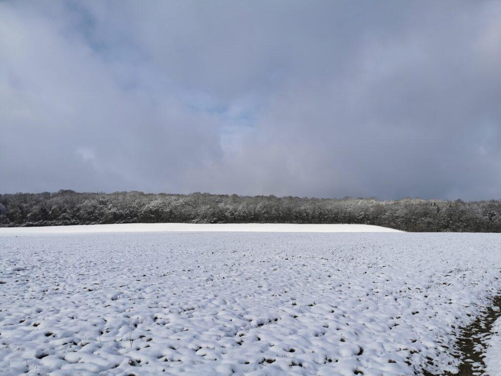Schnee bedeckter Acker, Wald un ein Streifen Sonne vor dem Wald
