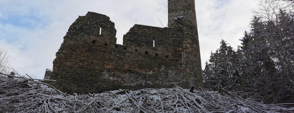 Blick auf die Burg vom Weg der zur Burg führt