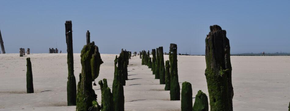 Pfähle im Sand am alten Fähranleger